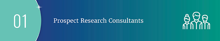 Consultants like the Averill Fundraising Solution's team serve as great prospect research resources for large campaigns.