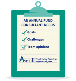 What do you need from an annual fund consultant?